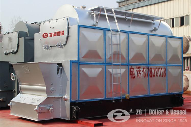 DZL Caldera de biomasa de vapor